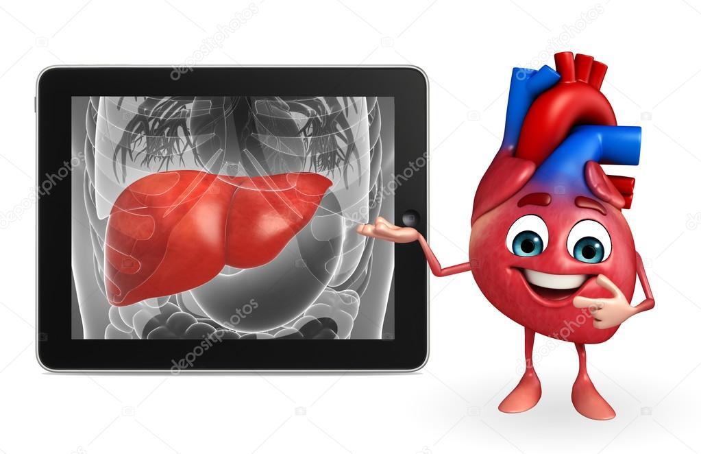 Carácter de corazón con la anatomía del hígado — Fotos de Stock ...