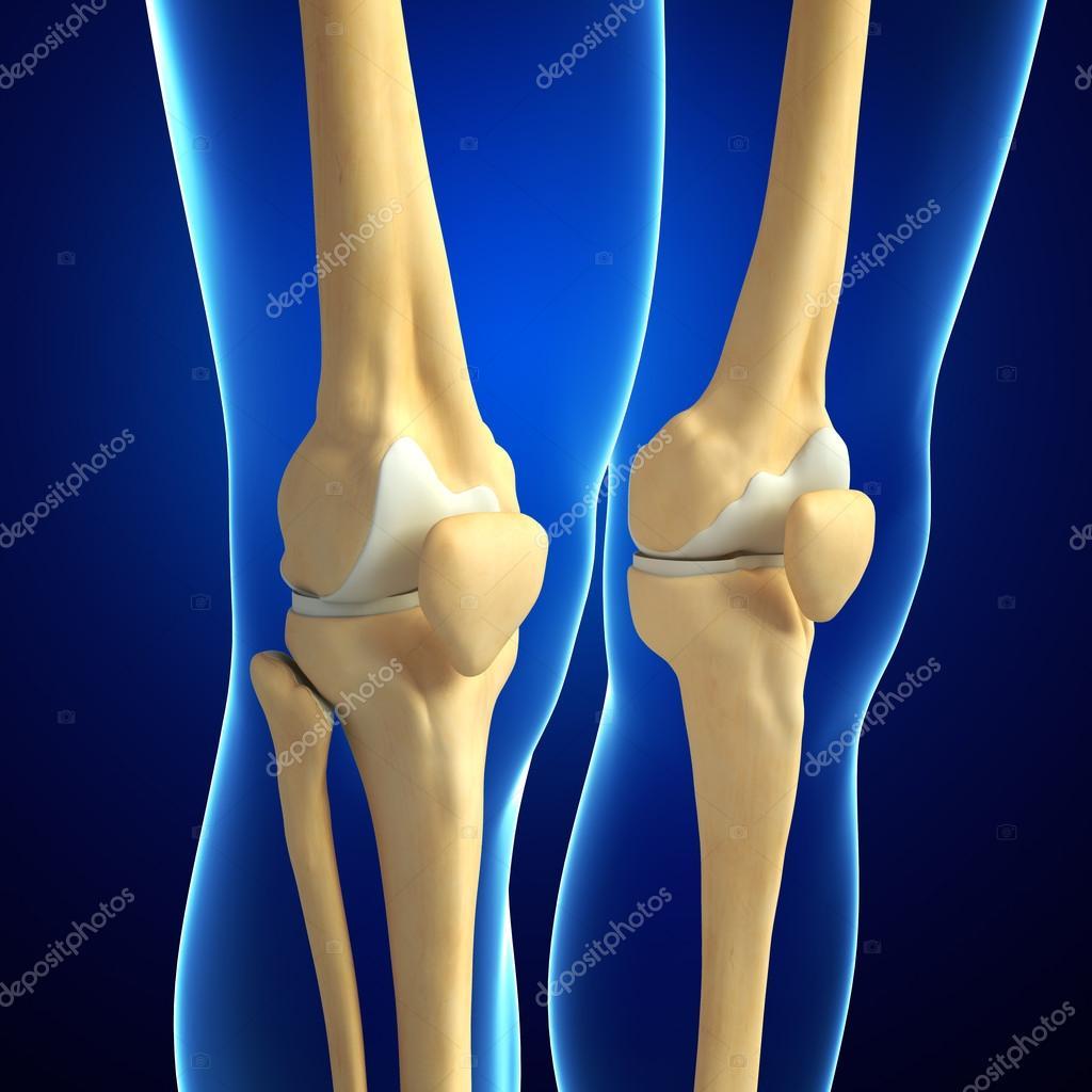 Arte de rodilla humana — Foto de stock © pixdesign123 #55497811