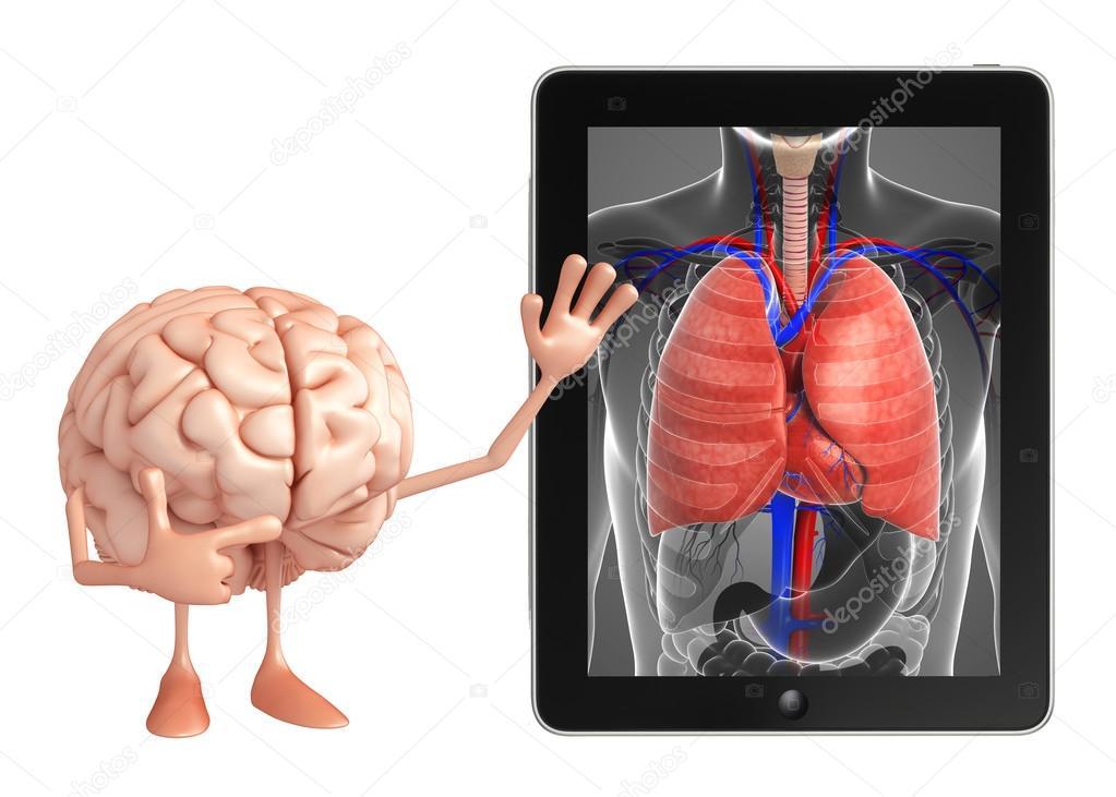 Carácter de cerebro con la anatomía de los pulmones — Foto de stock ...
