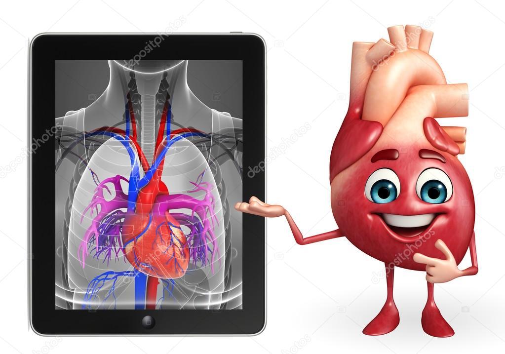 Herzcharakter mit Herz Anatomie — Stockfoto © pixdesign123 #55561971