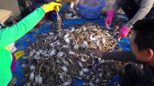 Phan Thiet, Vietnam - July 12th, 2020: Seafood market session seas, people gather inside crabs, snails, and fish, strenuous rowing fishermen fish brought ashore fishing village in Phan Thiet, Vietnam
