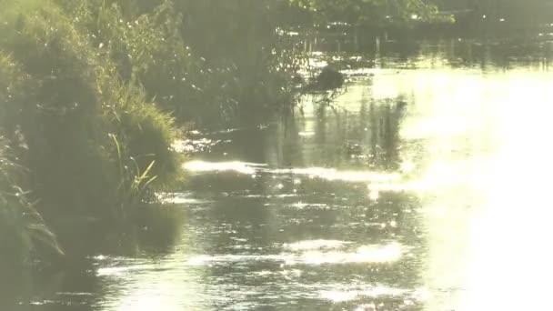 krásný západ slunce na řece