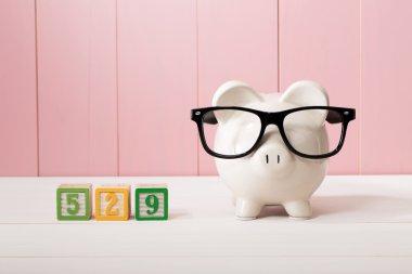 529 college savings plan theme