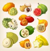 exotické tropické ovoce