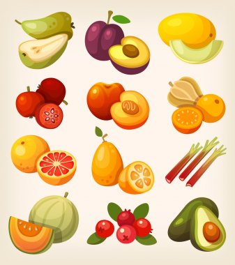 Set of colorful exotic fruit
