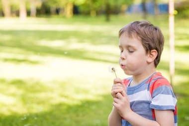 Sweet little boy blowing a dandelion