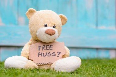Teddy bear holding cardboard with information Free Hugs !
