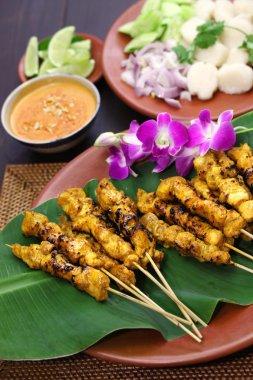 Chicken satay with peanut sauce, indonesian skewer cuisine