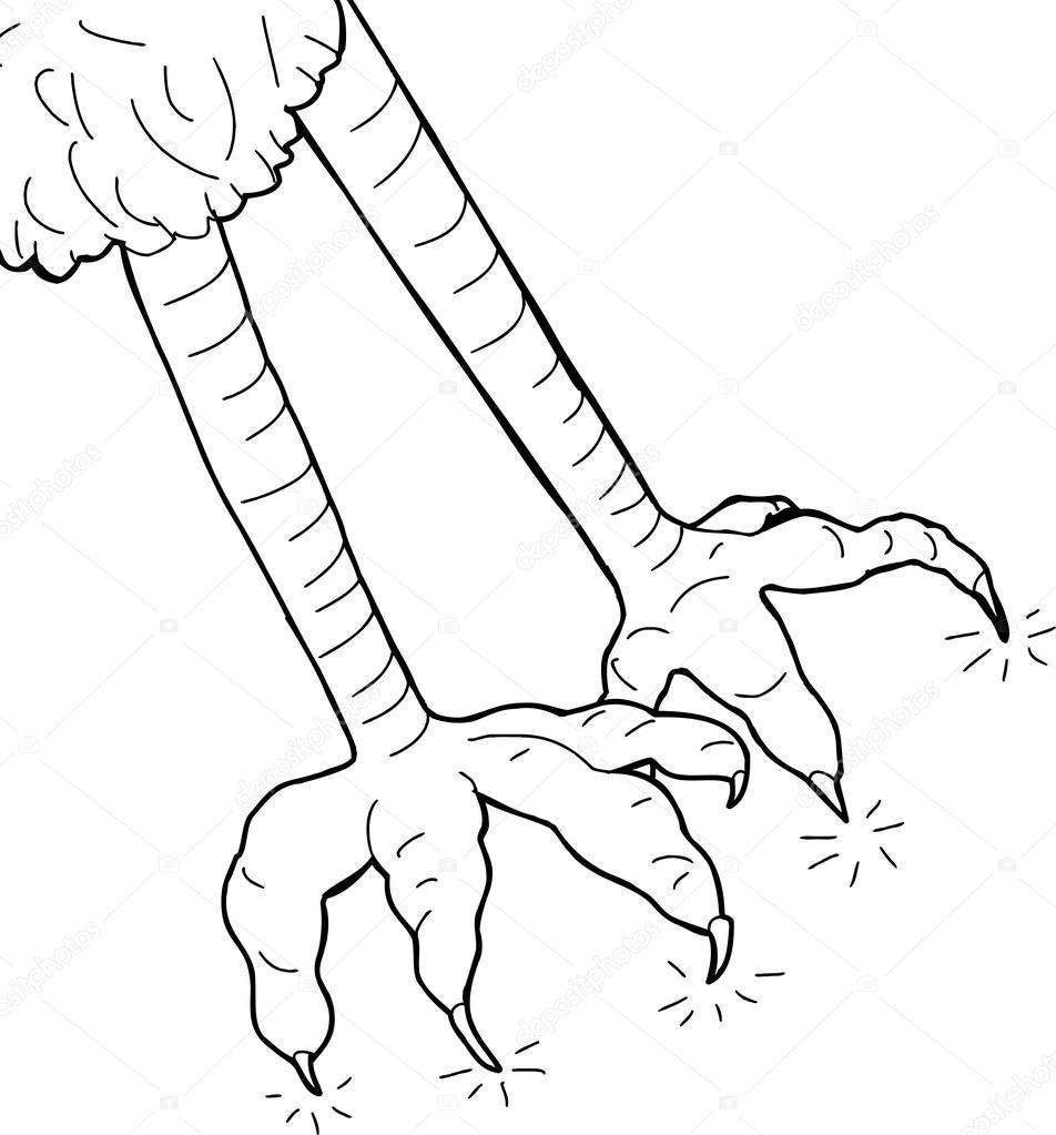 outline of bird claws u2014 stock vector theblackrhino 58589071