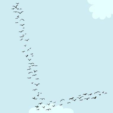 Bird Formation In L