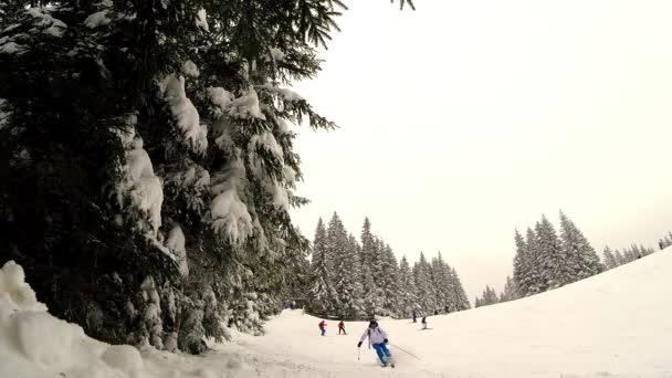 Zpomalený pohyb lyžař lyžování skákání nad fotoaparátem