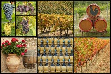 tuscan wine collage