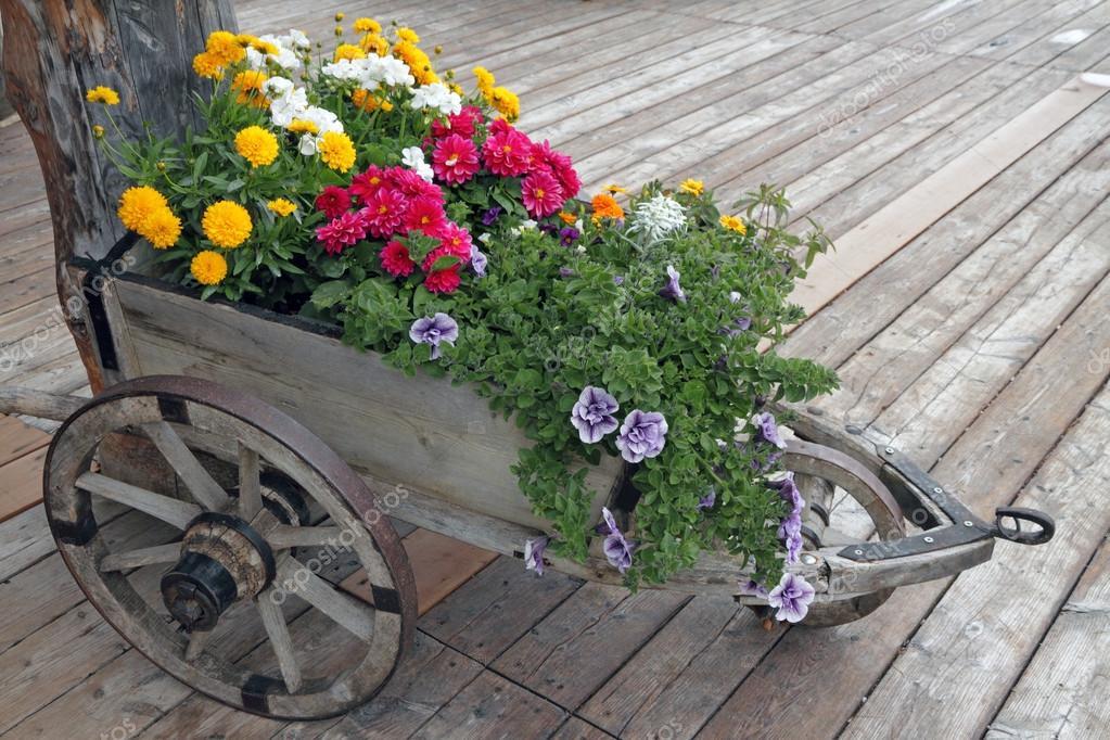 Amado flores no carrinho de mão — Stock Photo © Malgorzata_Kistryn #54344513 VF07
