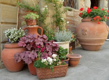 Various traditional clay planters