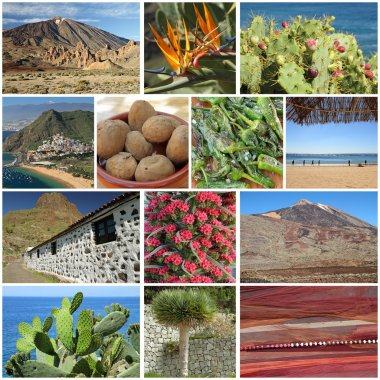 Group of images from Tenerife