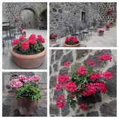 Picturesque corner with garden furniture