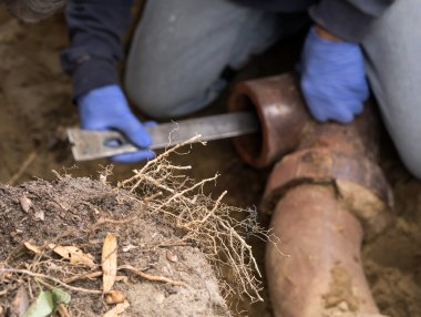Man Digging Tree Roots Out of Old Clogged Clay Ceramic Sewer Pipe