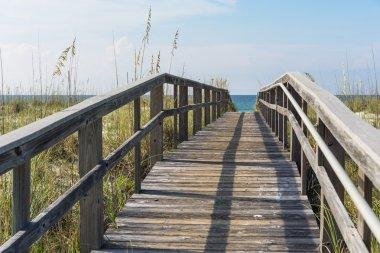 Rustic Wood Beach Boardwalk through Sand Dunes
