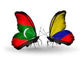 Motýli s příznaky Maledivy a Columbia