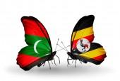 Motýli s příznaky Maledivy a Uganda