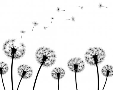 background dandelion faded silhouettes