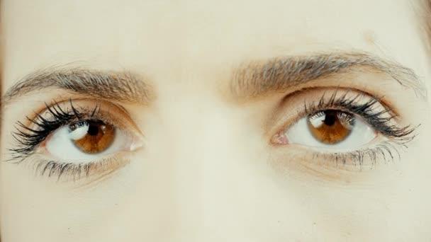 erstaunliche große braune Augen suchen Kamera extreme Nahaufnahme 4k
