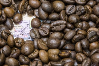 Map of Guatemala under a background of coffee beans