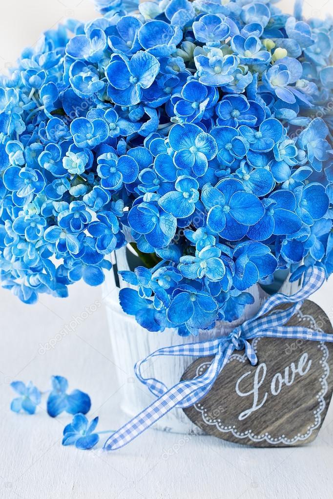 Blaue Hortensie Blumen Stockfoto C Ulchik74 83076248