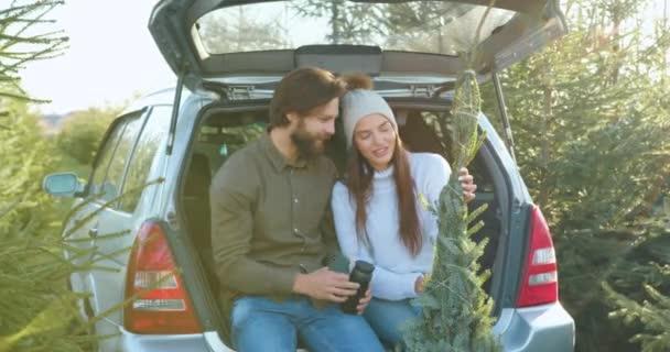 Příjemný spokojený šťastný mladý pár sedí v autech kufru a mluví při pohledu na nádherné vánoční stromeček si vybrali pro dovolenou na zvláštním místě s jedlemi výsadby