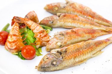 Grilled fish with shrimp salad