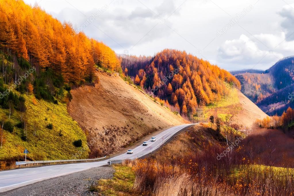 Road to autumn.
