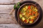 Fotografie Zeleninová polévka s mungbeen pohled shora horizontální