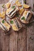 Fotografia Panini con gli spratti, crema di formaggio e limone. vie di verticale superiore