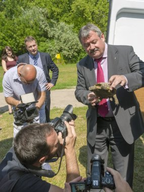 News conference at Szeged Zoo about Hermanns tortoises