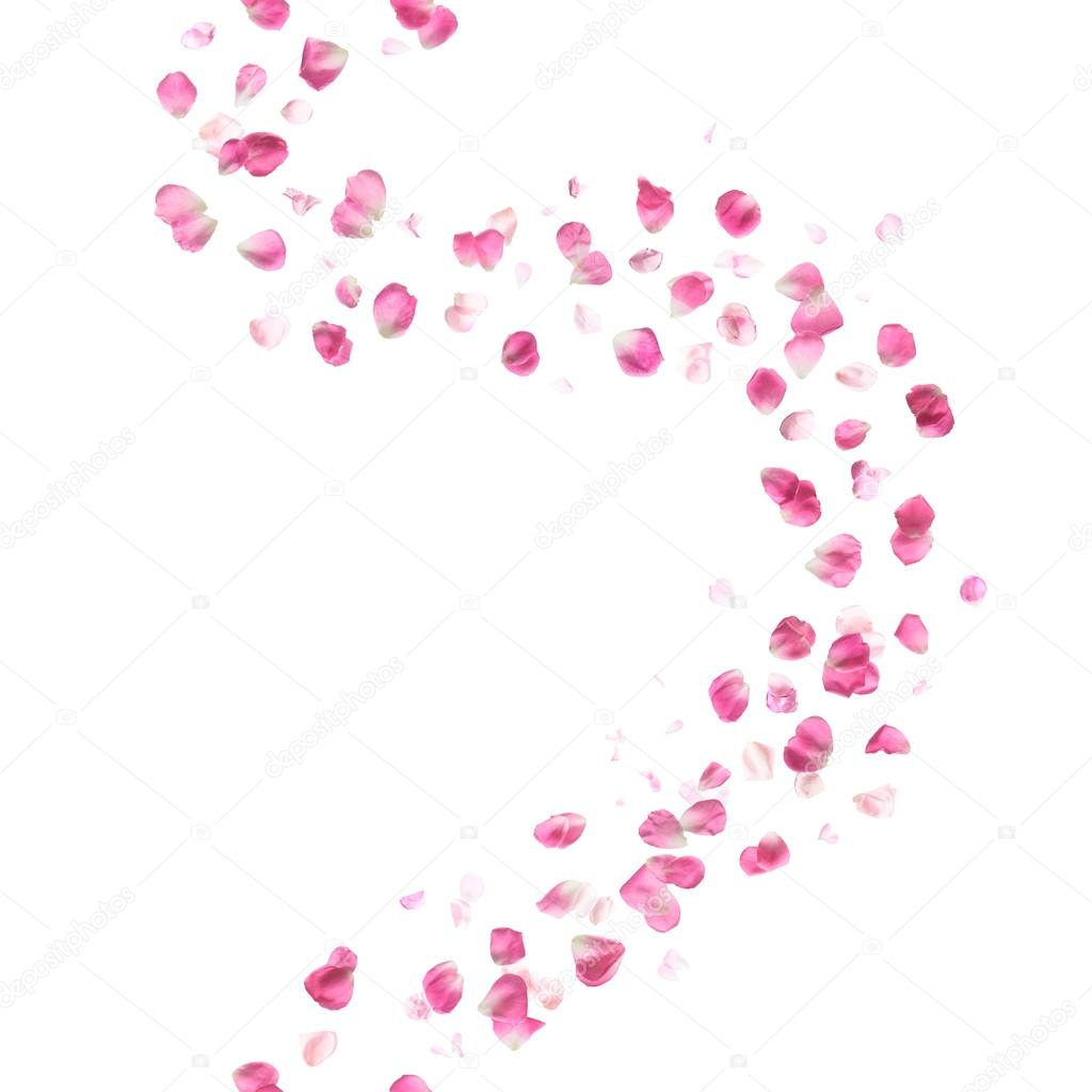 Seamless Pink Rose Petals Pattern