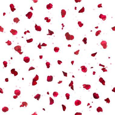 Repeatable Rose Petals and Bokeh
