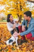 boldog fiatal pár játék kutyával a szabadban az őszi
