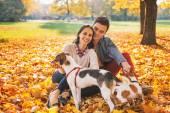 portré, boldog fiatal pár ül kint, az őszi park egy