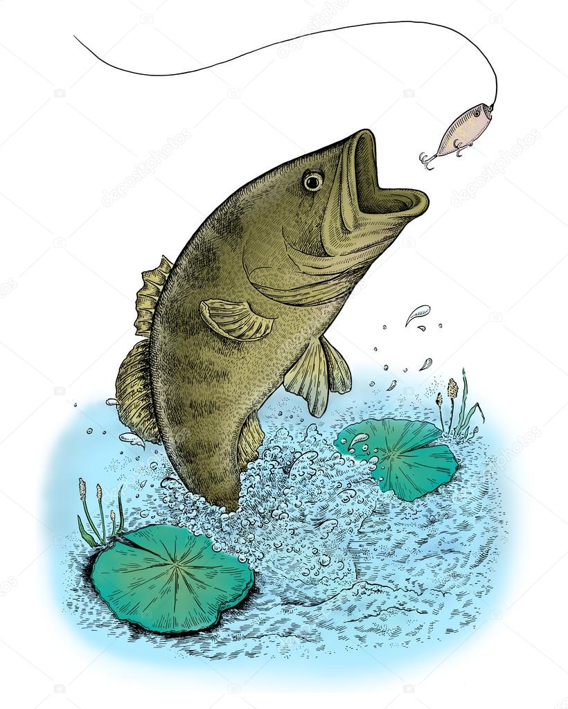 Catfish jumping out of water drawing for Outside fish