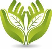 Fotografia Logo foglia mani