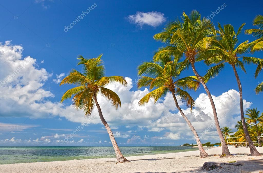 Tropical summer paradise in Key West Florida