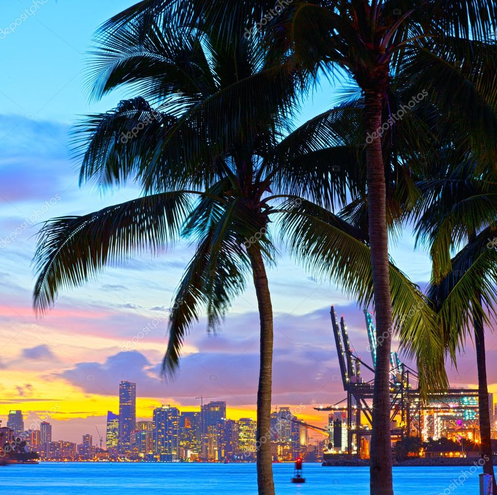 Miami Downtown and port sunset panorama