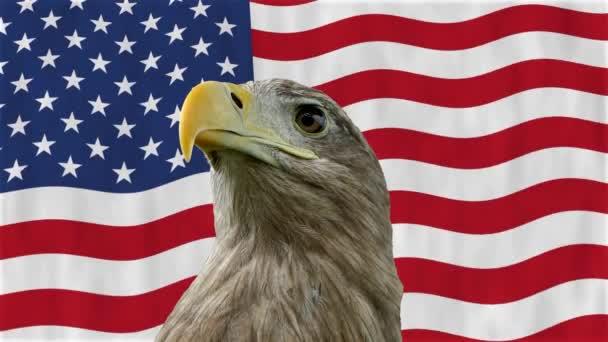 Horský orel na pozadí vlajky USA.