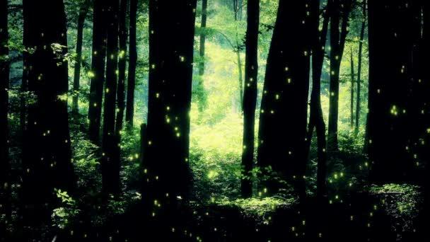 Fairy Tale elvarázsolt erdő