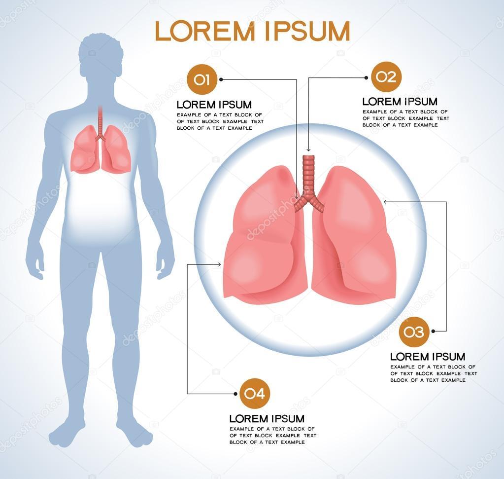 Rgblung. Moderne medizinische Infografiken — Stockvektor © VLADGRIN ...