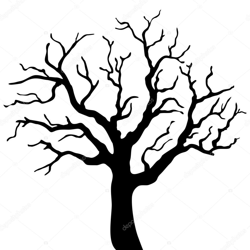 Silhouette d 39 arbre noir isol sur fond blanc image vectorielle loca 107505866 - Dessin arbre simple ...
