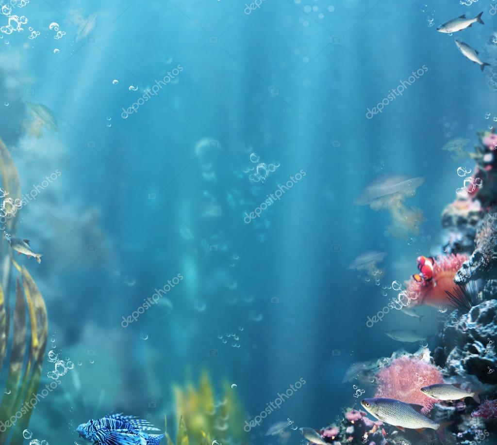 Marine. Sea Life. Aquarium with Fishes and Corals