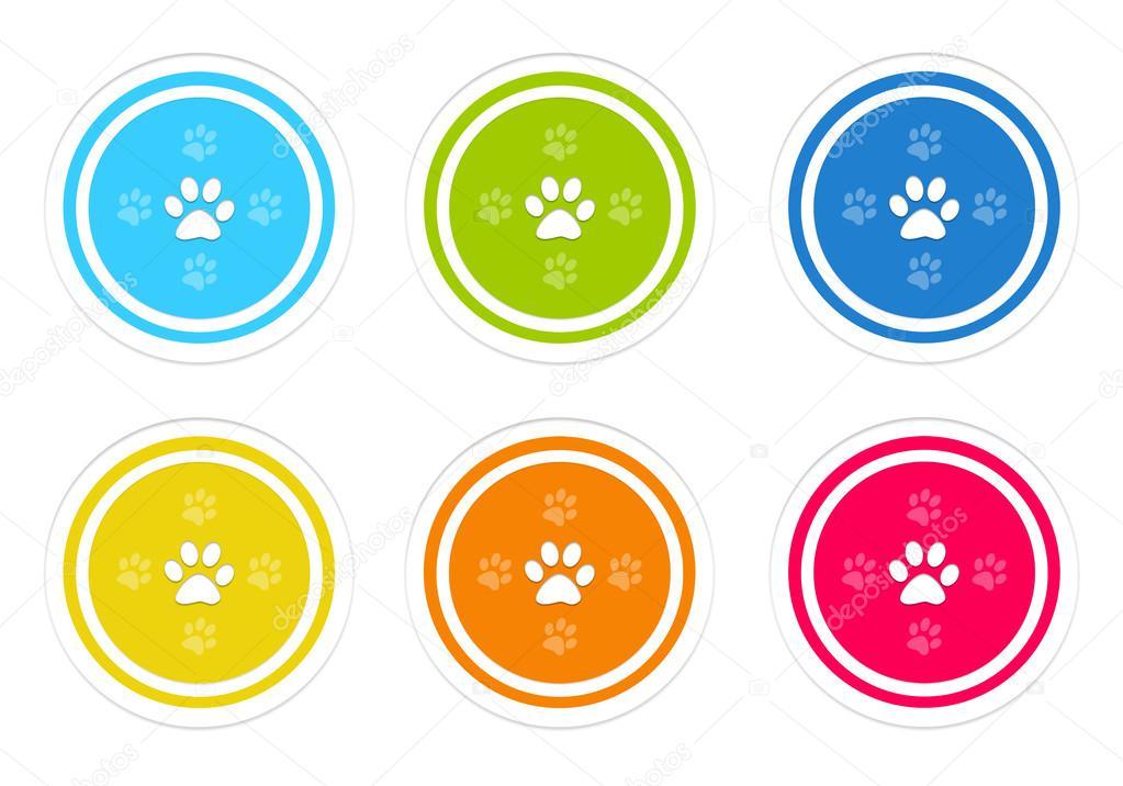 Huellas De Animales Colores