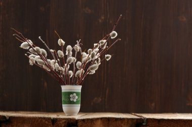 Bunch of pussy willow twigs in green vase on wooden background