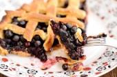 Fotografie Piece of fresh homemade lattice pie with whole wild blueberries